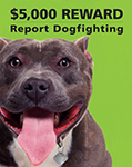 Report Dogfighting $5000 Reward